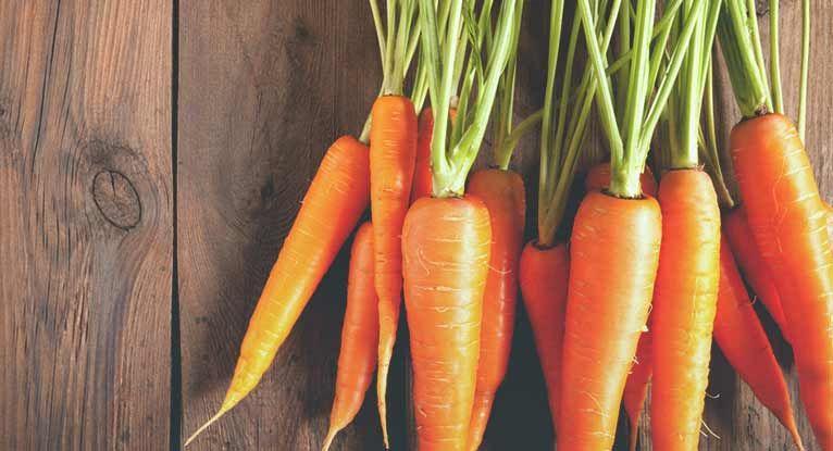 allergi mot morötter